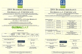GlobalG.A.P. Certificate - CERVINO Interfruits s.a.s.